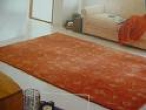 limpieza de alfombras en quilpue belloto villa alemana vi�a del mar re�aca