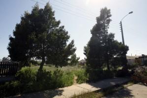 venta sitio en bosques de algarrobo.