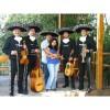 Mariachis a domicilio 02-7279788