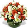 Envío de Flores a Domicilio, Rosas Ecuatorianas, Ramos de Flores, Arreglos